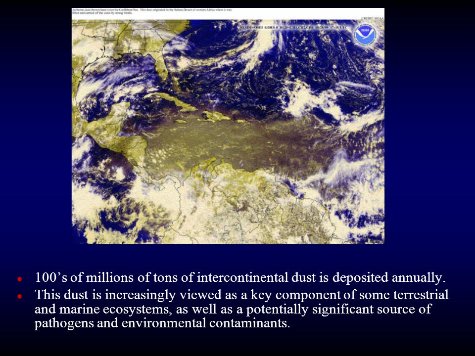 100's of millions of tons of intercontinental dust is deposited annually.
