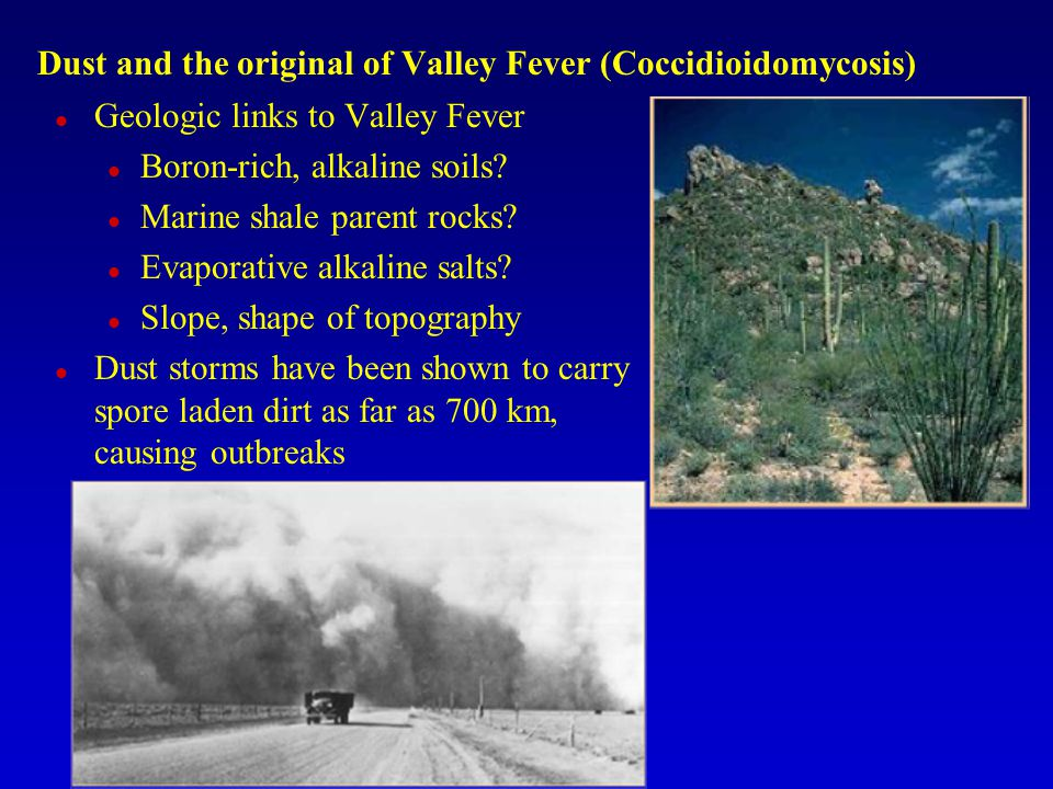 Dust and the original of Valley Fever (Coccidioidomycosis)