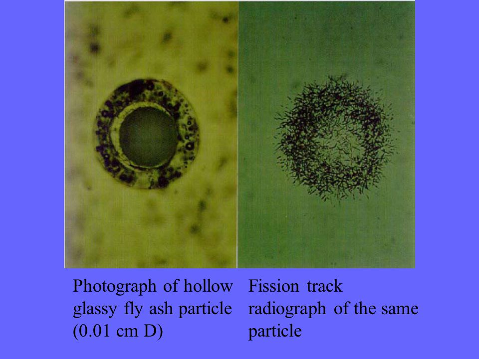 Photograph of hollow glassy fly ash particle. (0.01 cm D) Fission track. radiograph of the same.