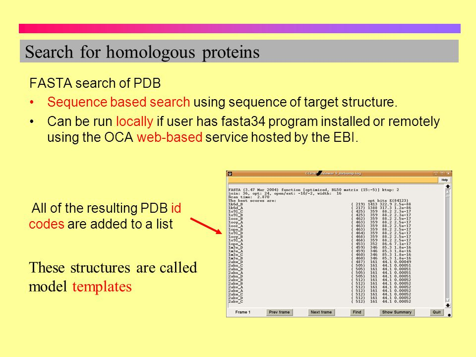 Search for homologous proteins