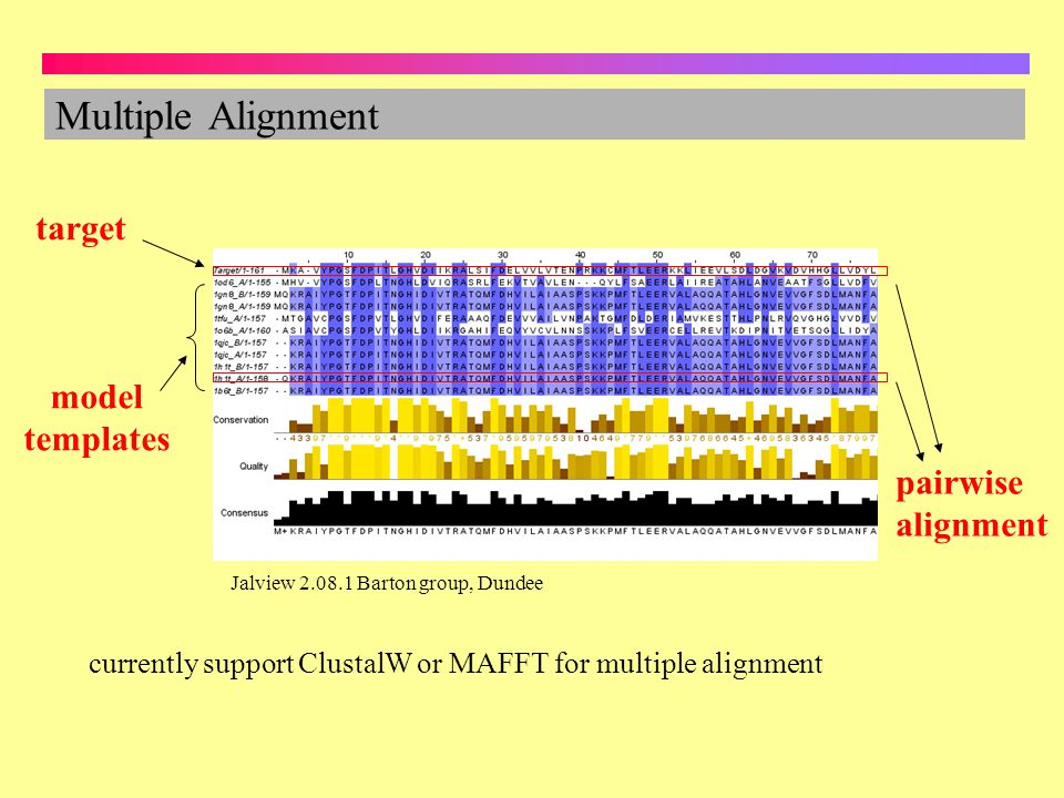 Multiple Alignment target model templates pairwise alignment