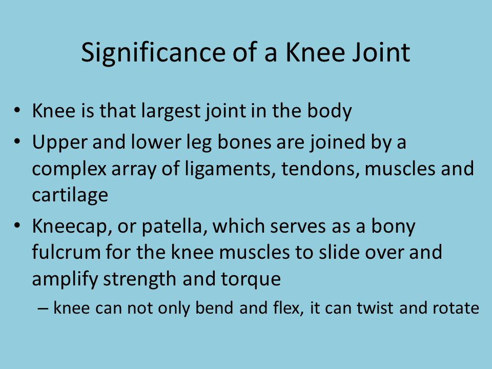 Significance of a Knee Joint