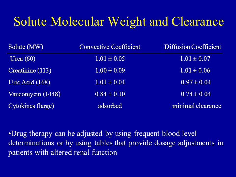 Solute Molecular Weight and Clearance
