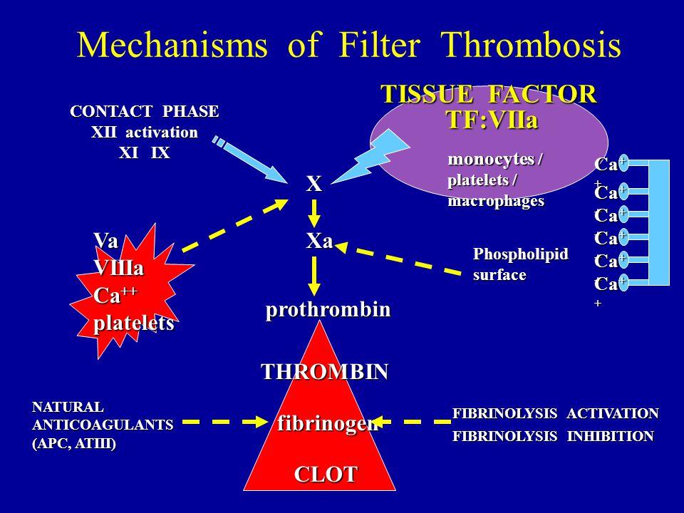 Mechanisms of Filter Thrombosis