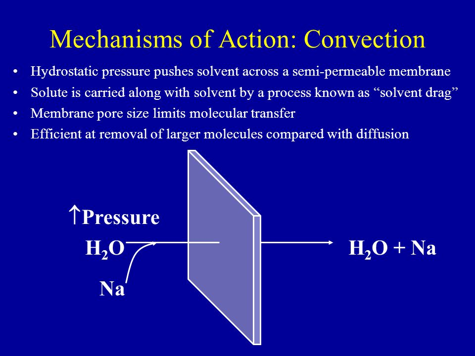 Mechanisms of Action: Convection