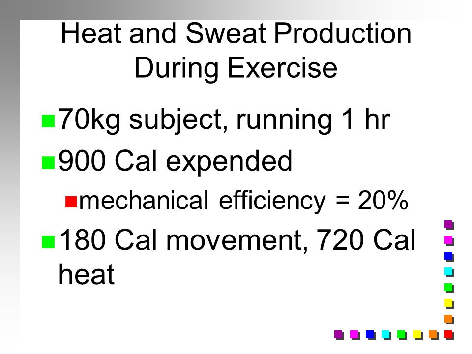 Heat and Sweat Production During Exercise