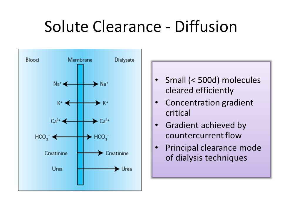 Solute Clearance - Diffusion