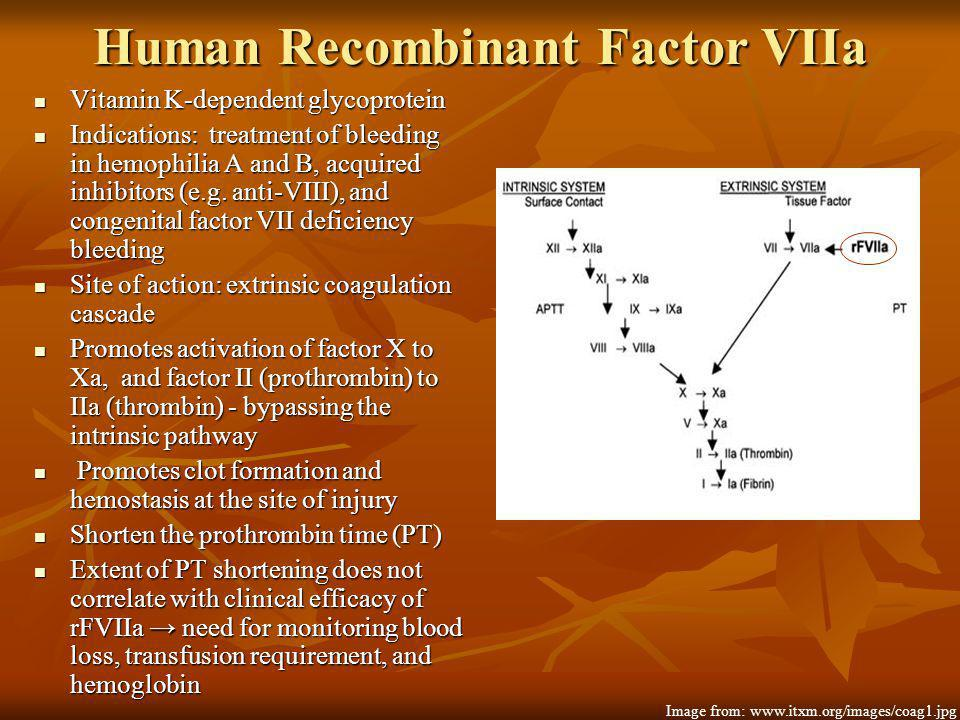 Human Recombinant Factor VIIa