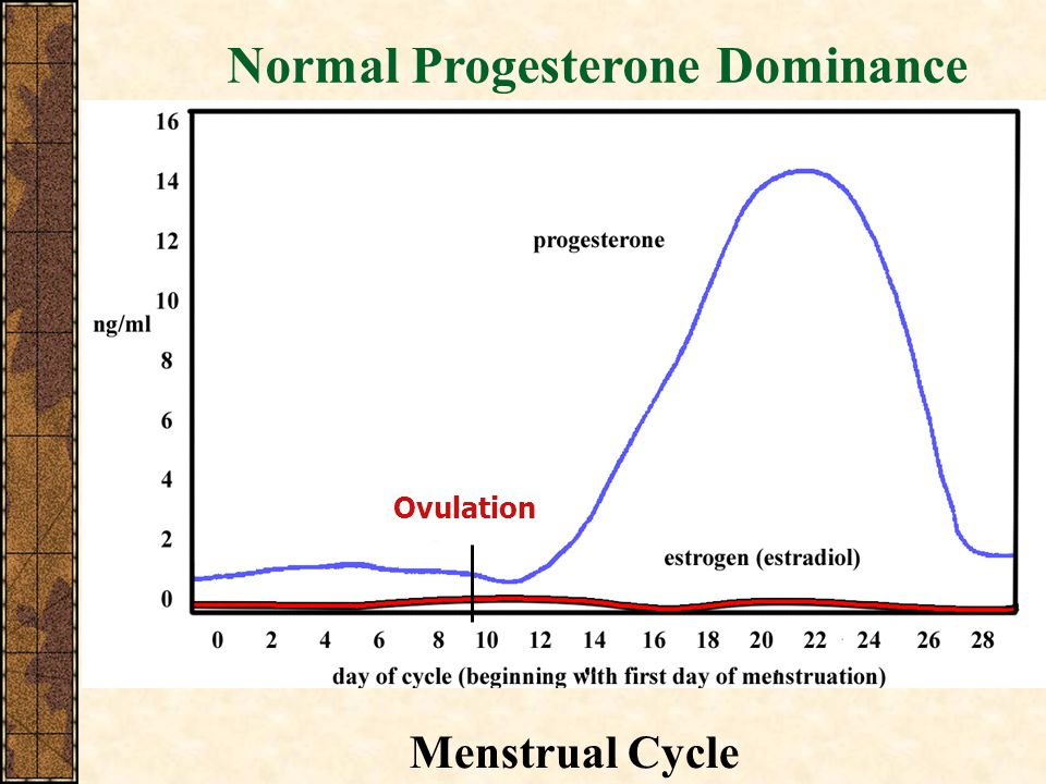 Normal Progesterone Dominance