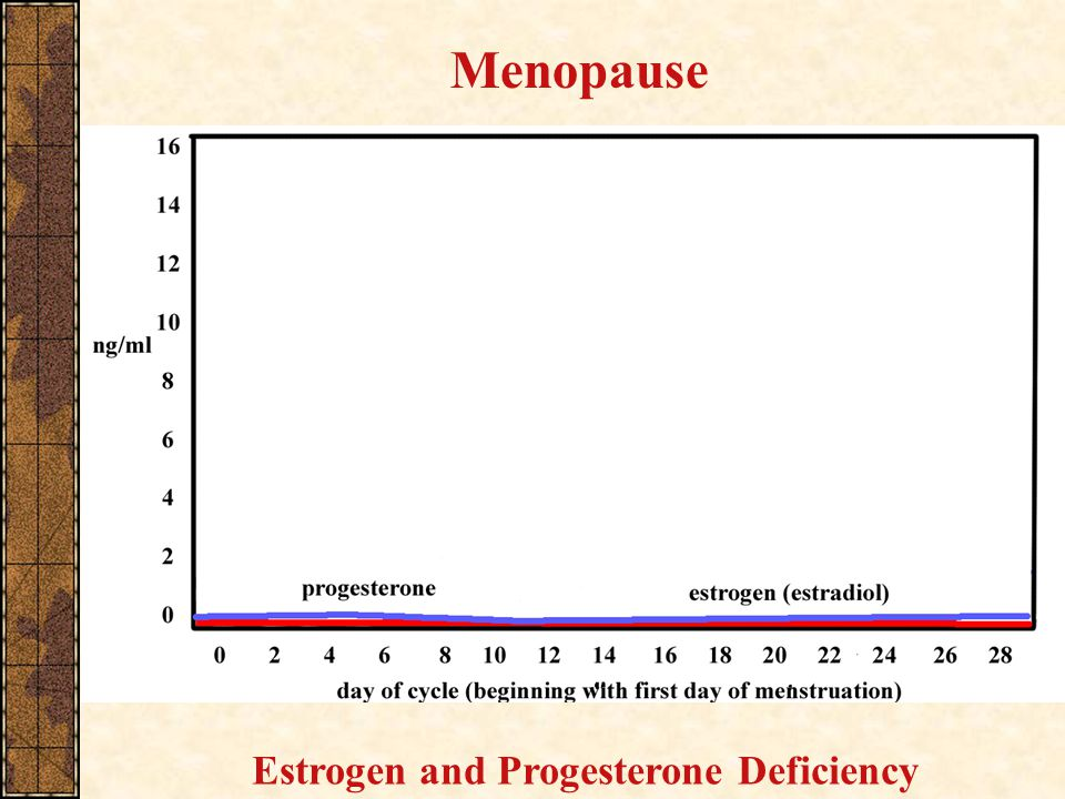 Menopause Estrogen and Progesterone Deficiency
