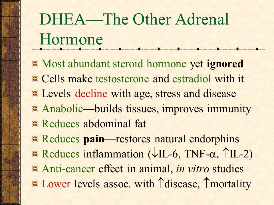 DHEA—The Other Adrenal Hormone