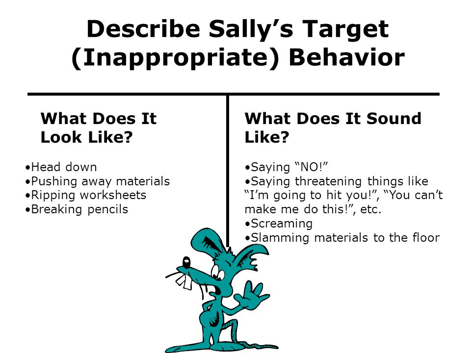 Describe Sally's Target (Inappropriate) Behavior