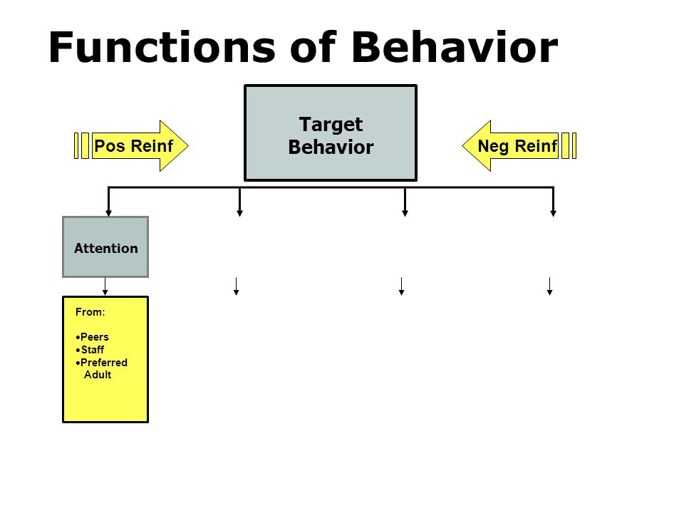 Functions of Behavior Target Behavior Pos Reinf Neg Reinf Attention