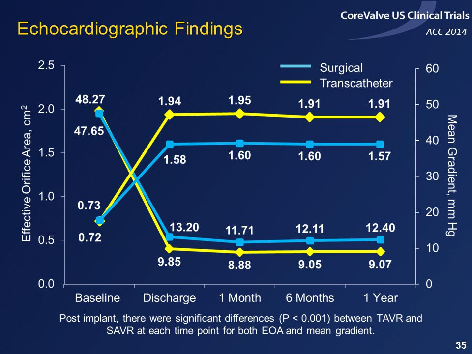 Echocardiographic Findings