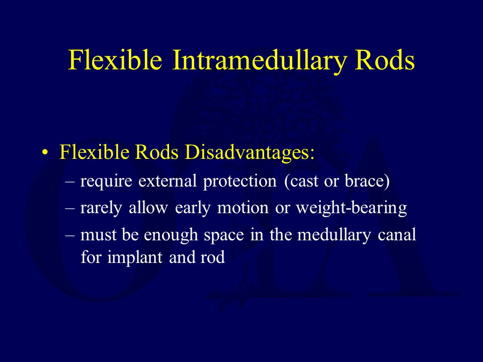Flexible Intramedullary Rods