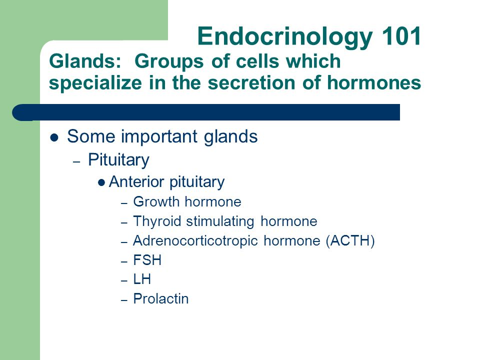 Endocrinology 101 Glands: Groups of cells which specialize in the secretion of hormones