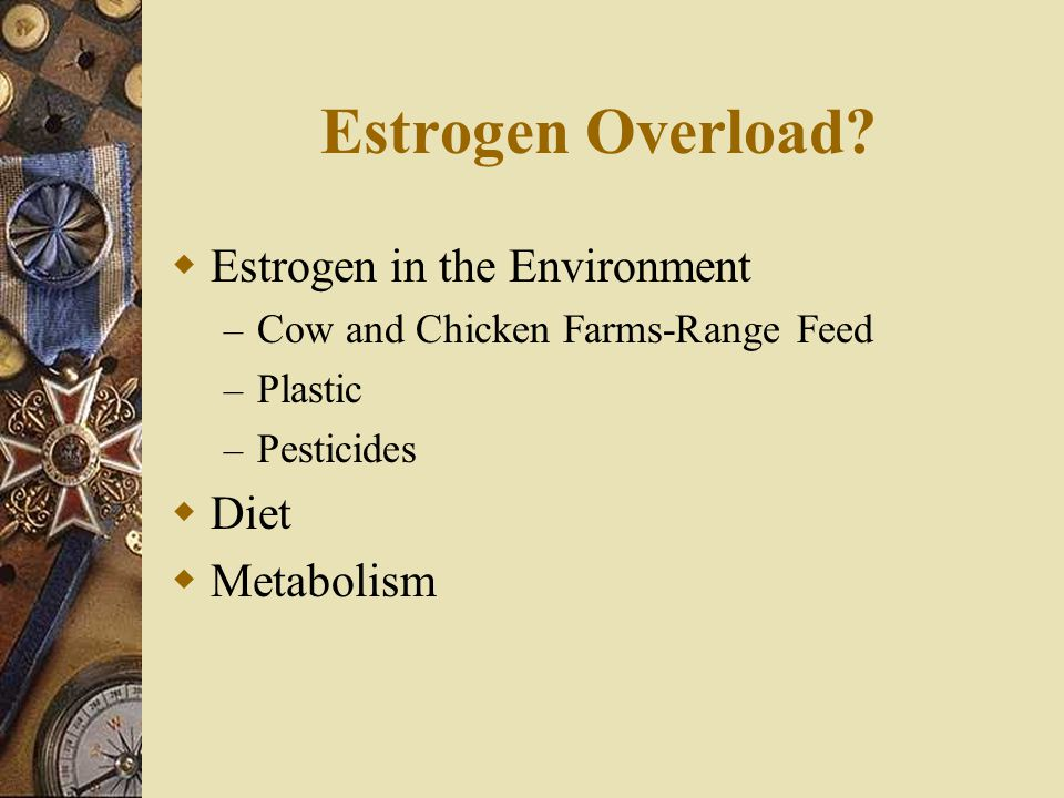 Estrogen Overload Estrogen in the Environment Diet Metabolism