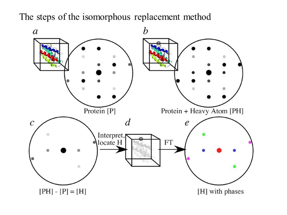 The steps of the isomorphous replacement method