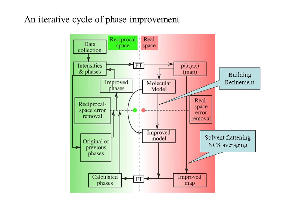 An iterative cycle of phase improvement