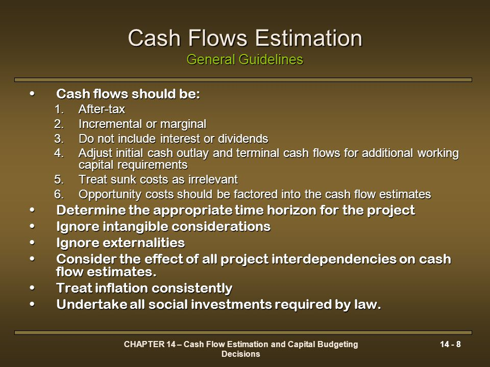 Cash Flows Estimation General Guidelines