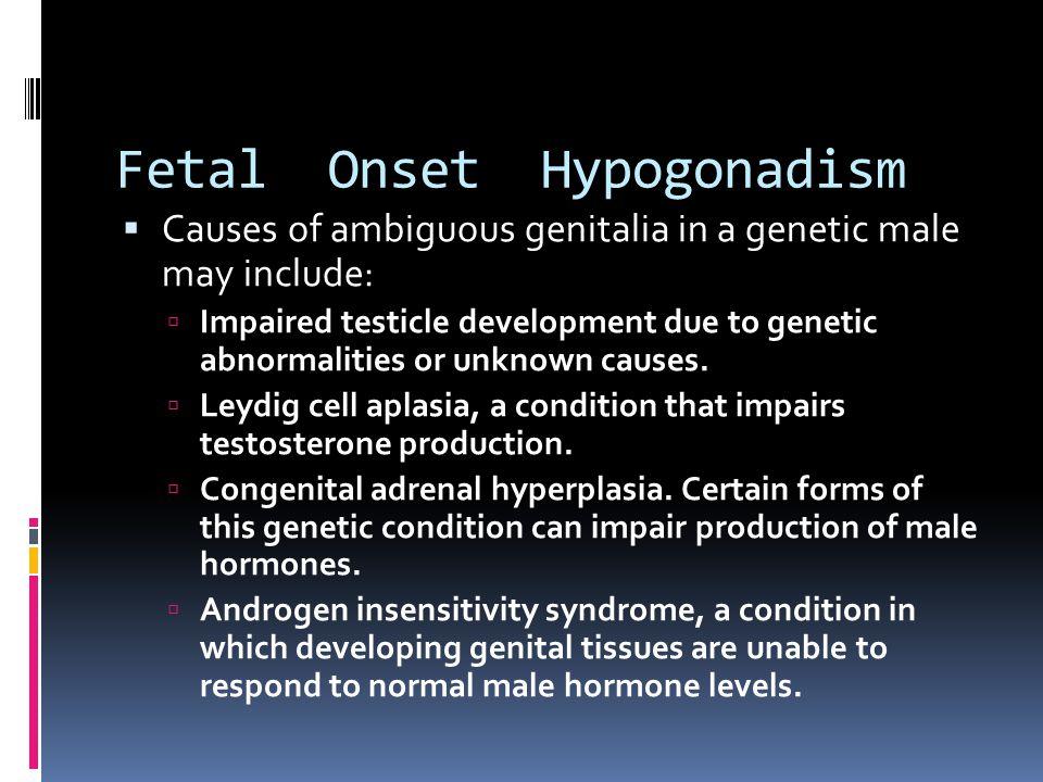Fetal Onset Hypogonadism