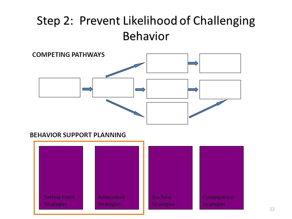 Step 2: Prevent Likelihood of Challenging Behavior