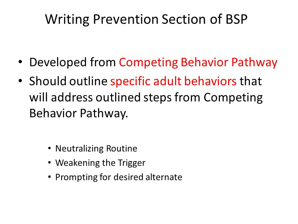 Writing Prevention Section of BSP