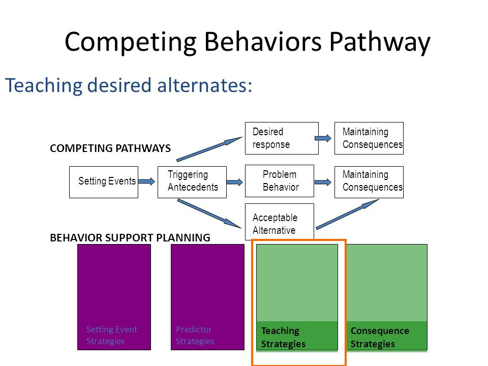 Competing Behaviors Pathway