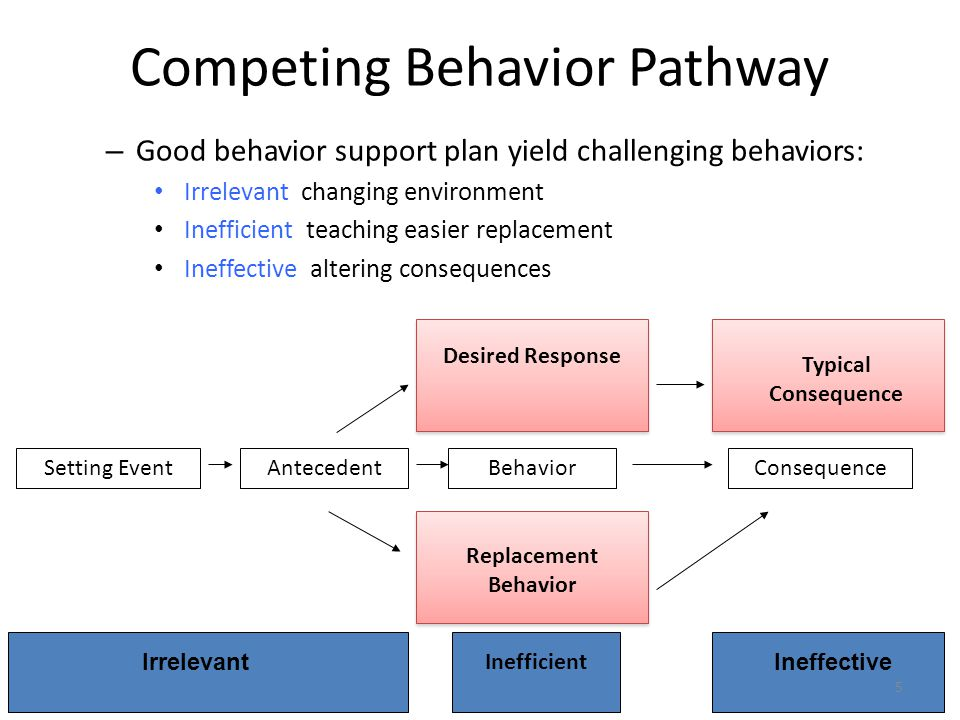 Competing Behavior Pathway