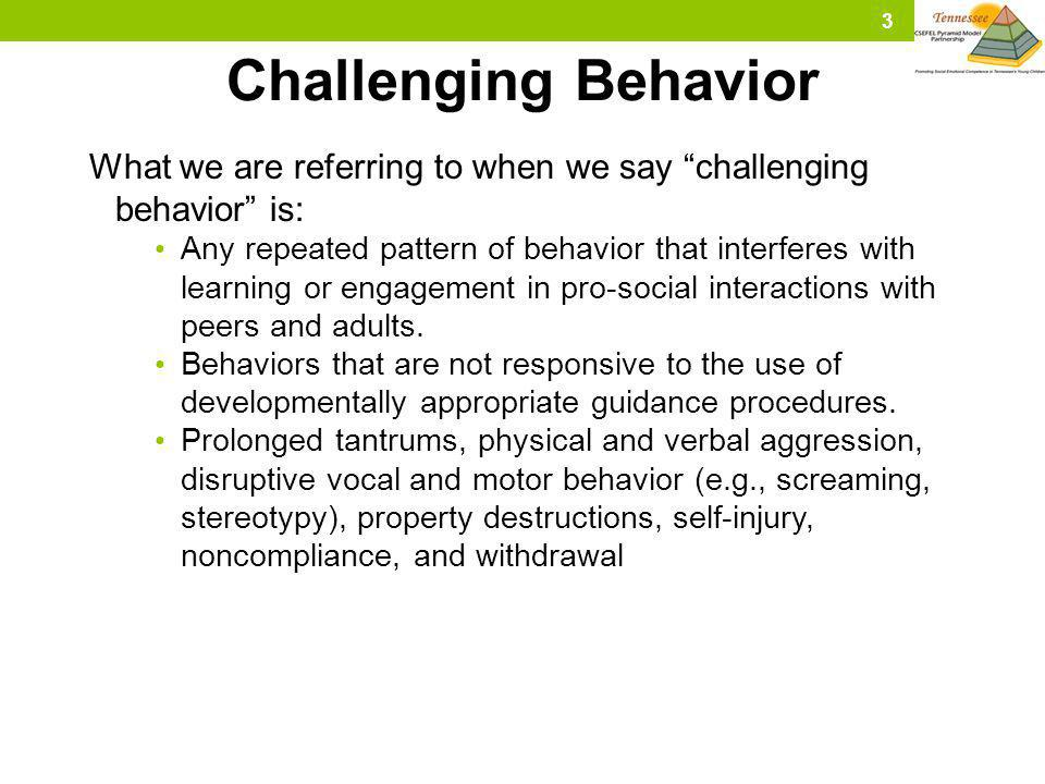 Challenging Behavior What we are referring to when we say challenging behavior is: