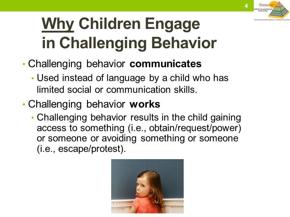 Why Children Engage in Challenging Behavior
