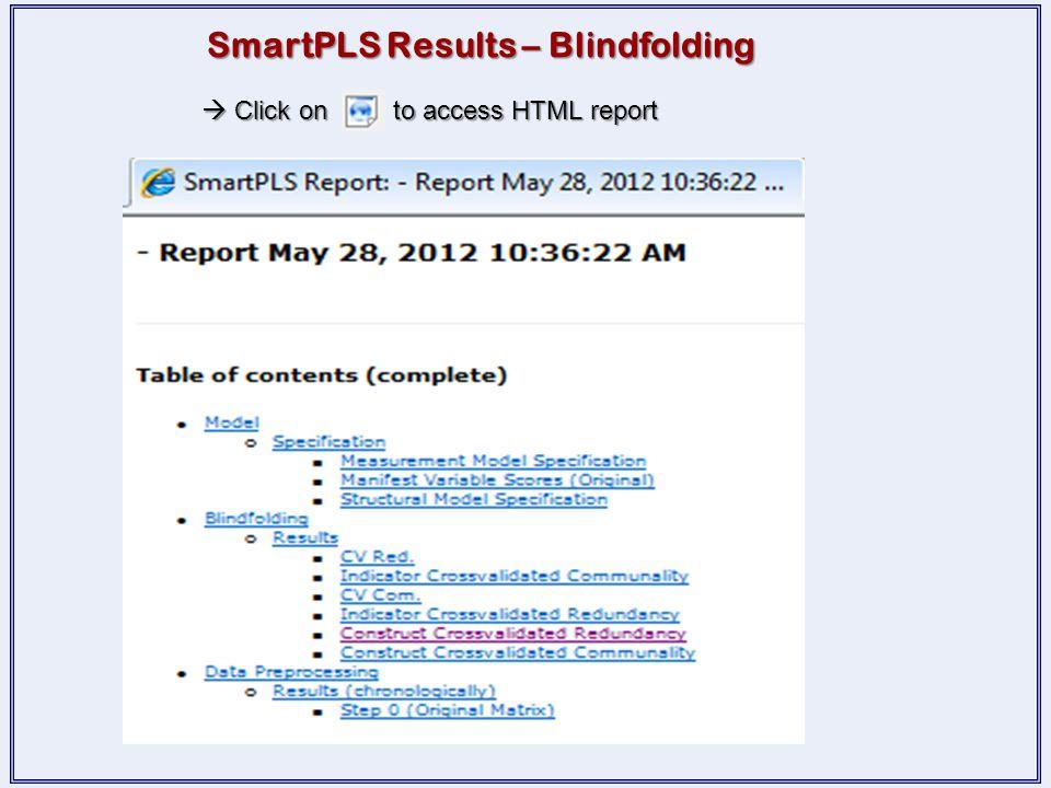 SmartPLS Results – Blindfolding
