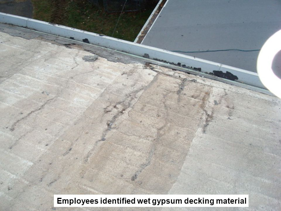 Employees identified wet gypsum decking material