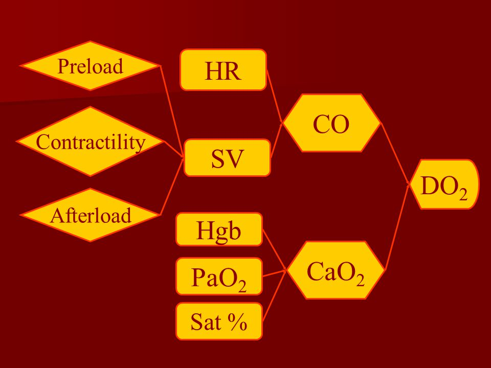 Preload HR CO Contractility SV DO2 Afterload Hgb CaO2 PaO2 Sat %