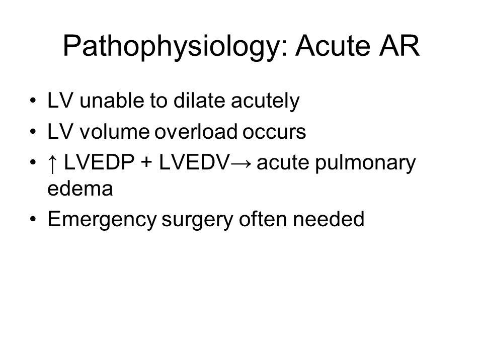 Pathophysiology: Acute AR