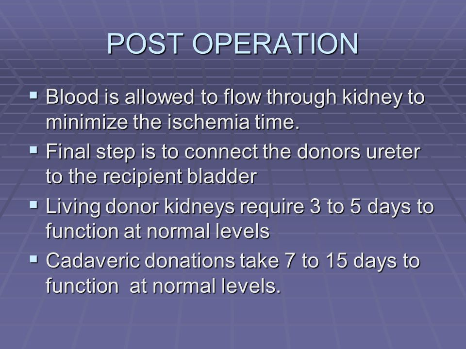 POST OPERATION Blood is allowed to flow through kidney to minimize the ischemia time.