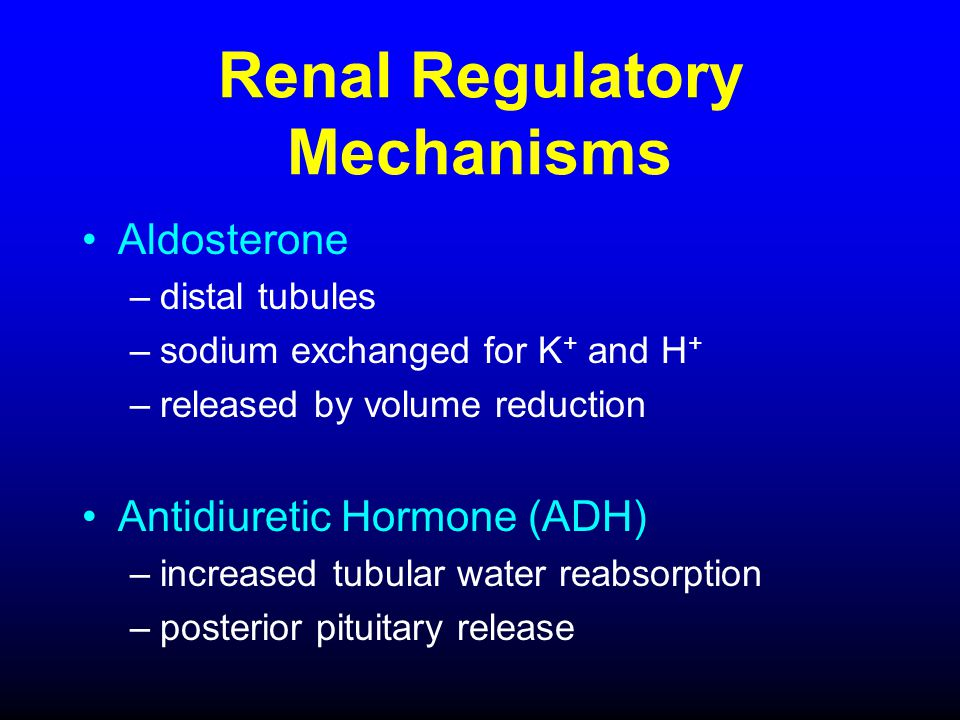Renal Regulatory Mechanisms