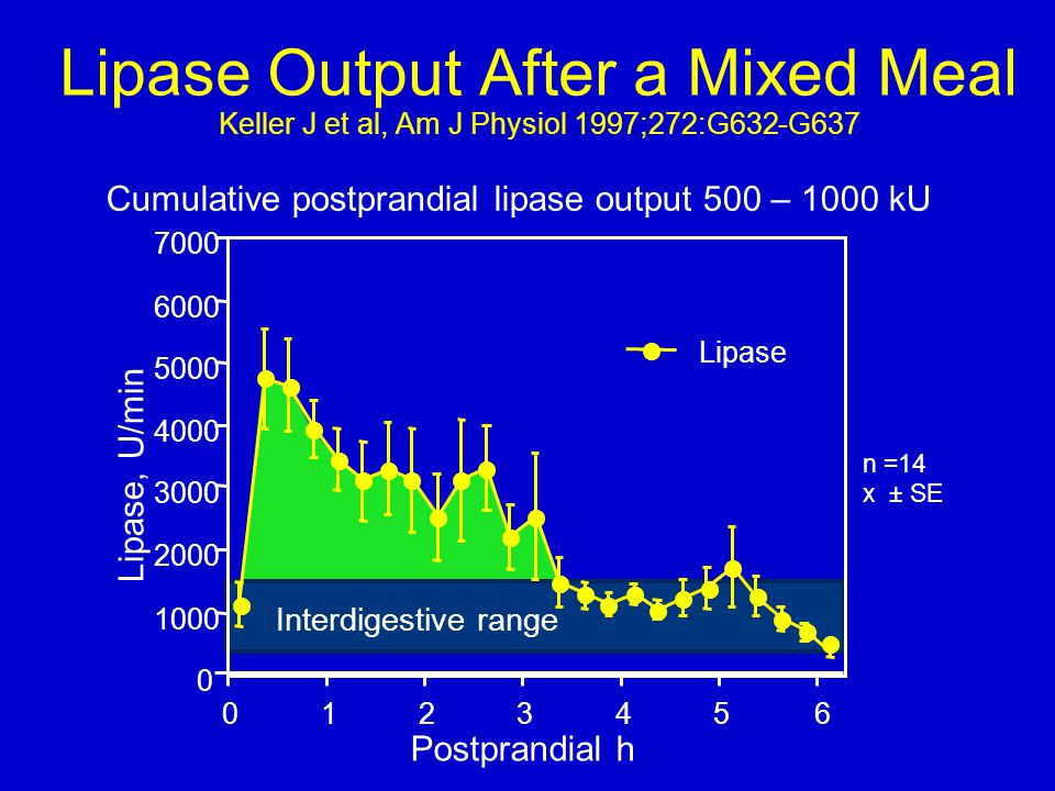 Lipase Output After a Mixed Meal Keller J et al, Am J Physiol 1997;272:G632-G637