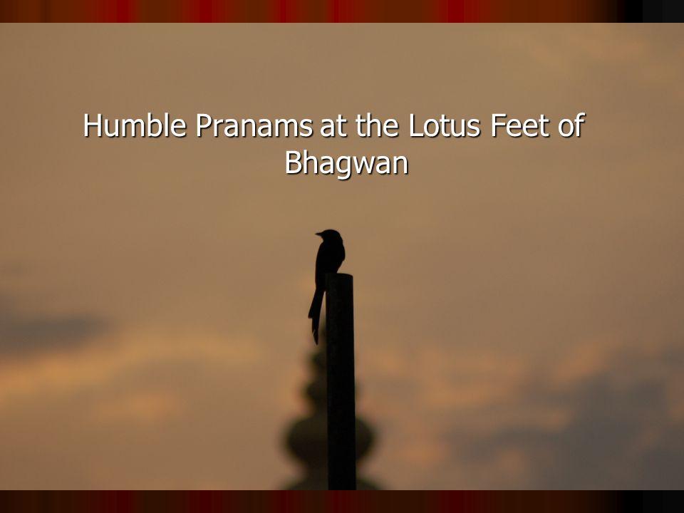 Humble Pranams at the Lotus Feet of Bhagwan