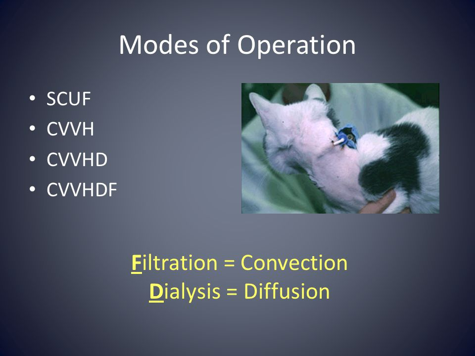 Filtration = Convection
