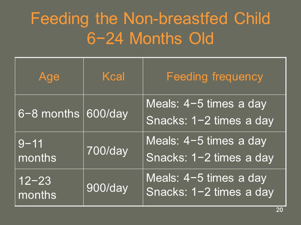 Feeding the Non-breastfed Child 6−24 Months Old