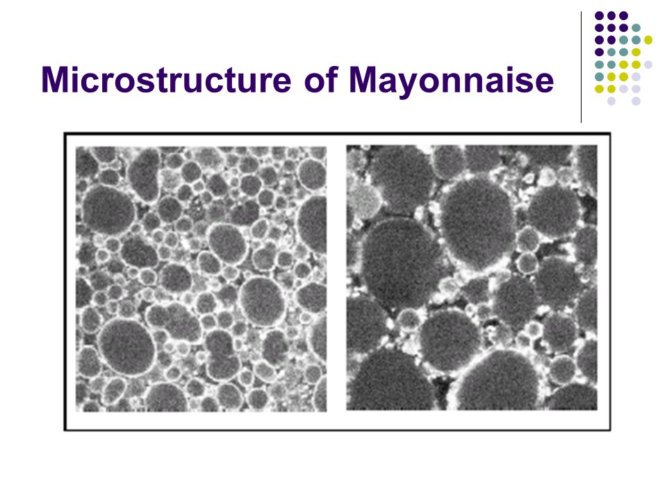 Microstructure of Mayonnaise