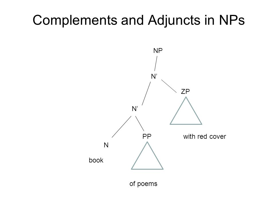 Complements and Adjuncts in NPs