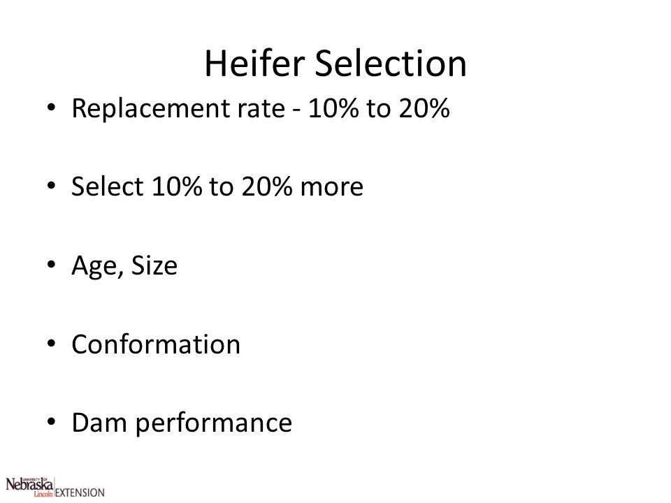 Heifer Selection Replacement rate - 10% to 20% Select 10% to 20% more