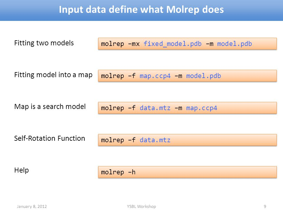 Input data define what Molrep does