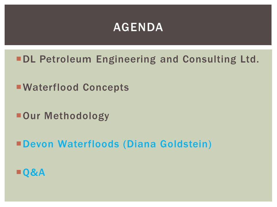Agenda DL Petroleum Engineering and Consulting Ltd.