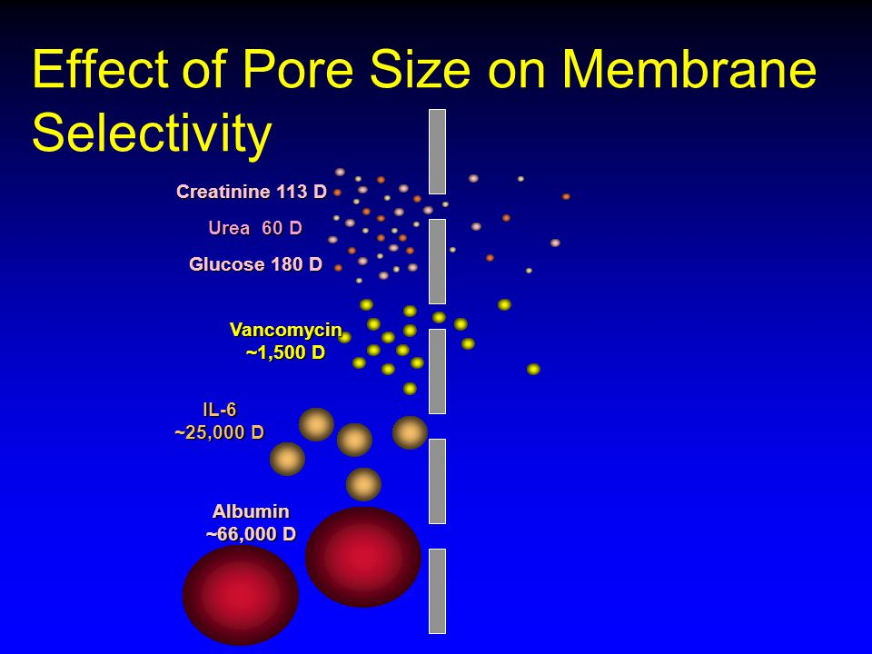 Effect of Pore Size on Membrane Selectivity