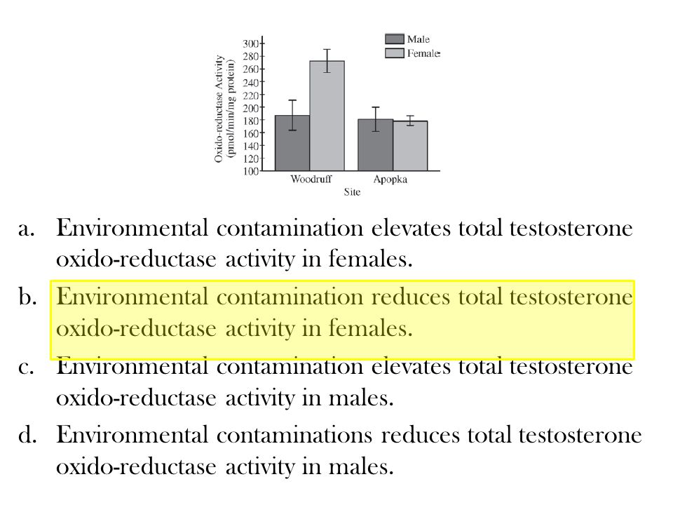 Environmental contamination elevates total testosterone oxido-reductase activity in females.