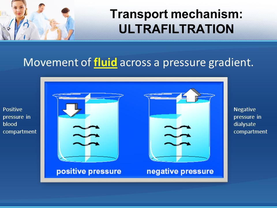 Transport mechanism: ULTRAFILTRATION