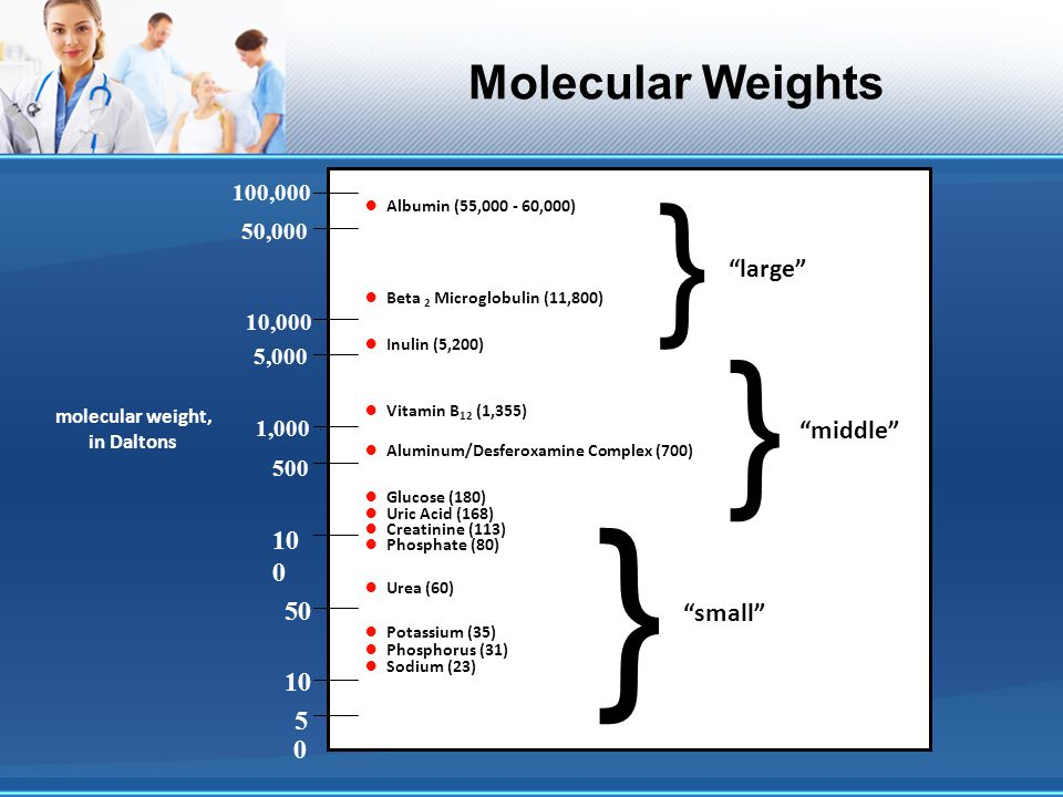 } Molecular Weights • Albumin (55,000 - 60,000)